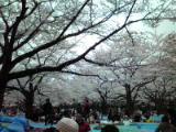 2010_0404-1.jpg
